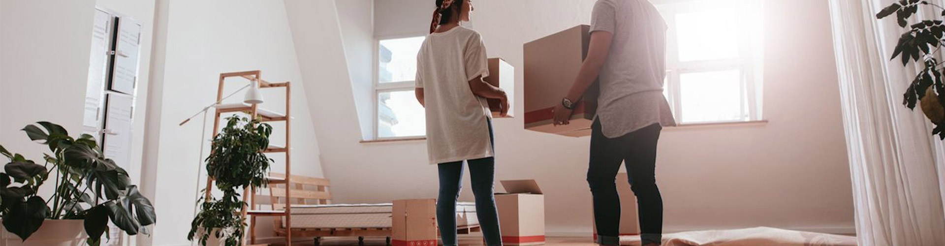 Removalists NSW